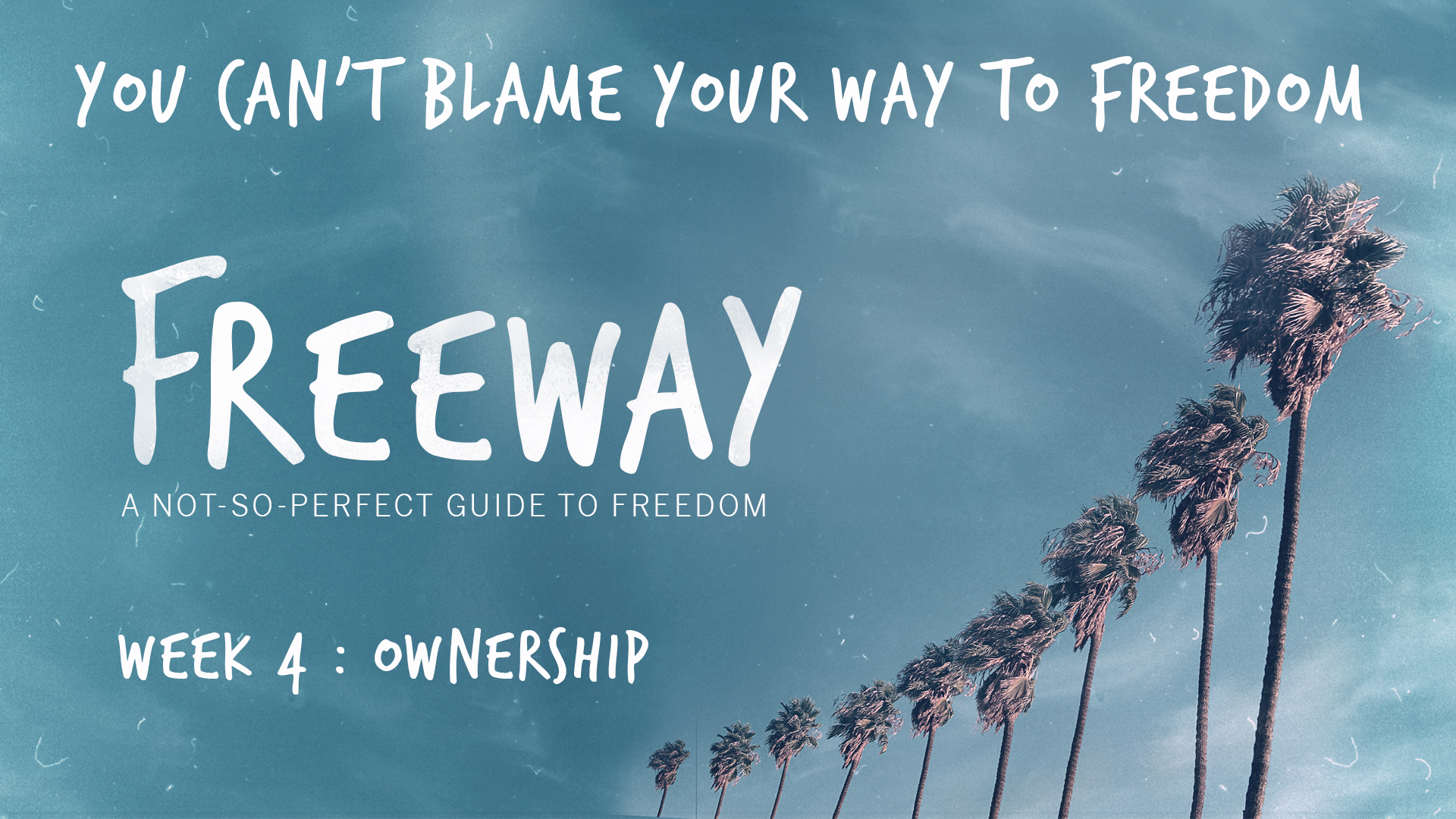 Ownership - You Can't Blame Your Way To Freedom